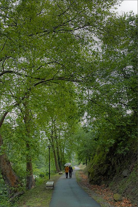 Vía verde de Returbiu (Fot.: Carlos Salvo).