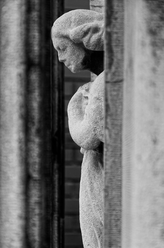 Desolación | Juan Luis Nepomuceno