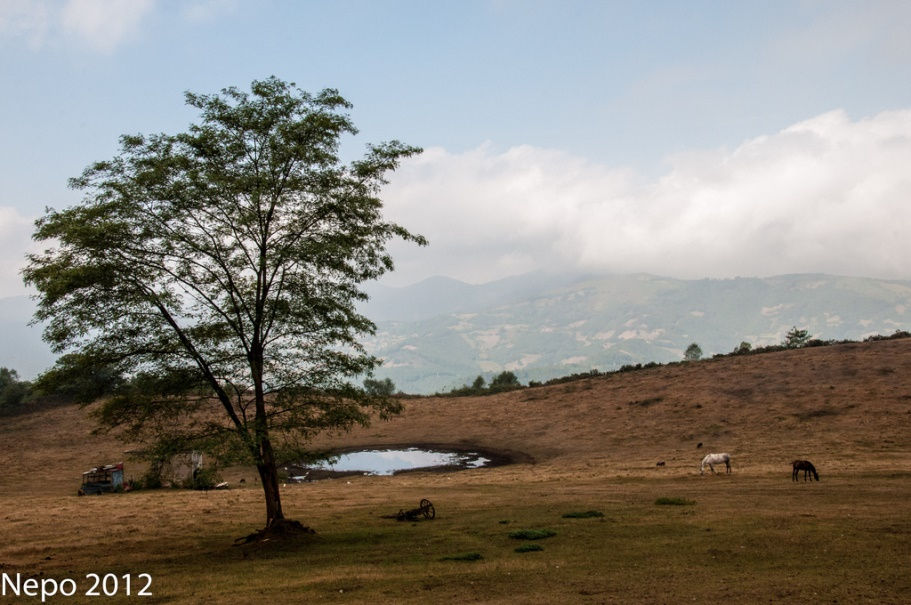 El Rancho | Juan Luis Nepomuceno