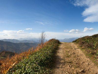 Camín al Paisaxe (Fot. Jose Luis Soto)
