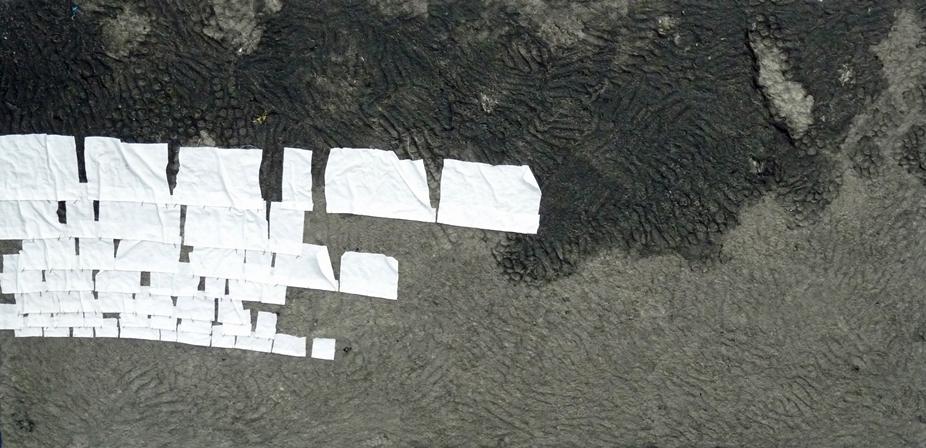 Autor: Gonzalo Prado Grela (Pigmentos, Carbón y Tela sobre tabla 200x100cm)