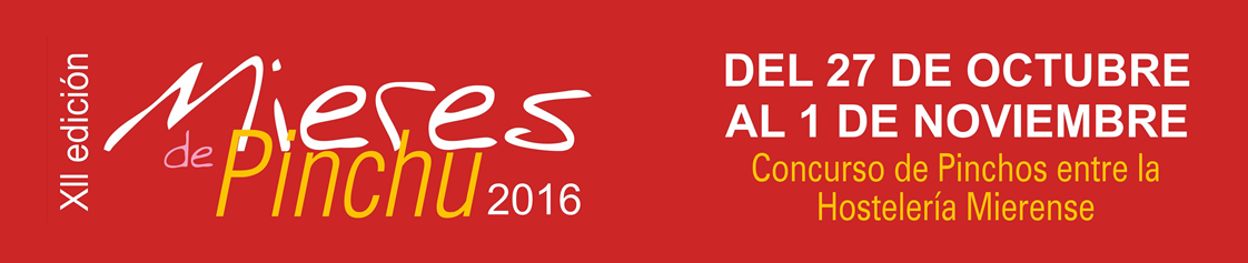 Banner Mieres de pinchu 2016