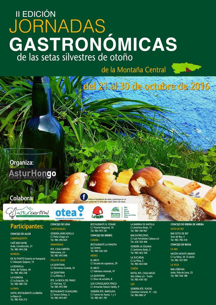 CARTEL SETAS MONTAÑA CENTRAL 2016web