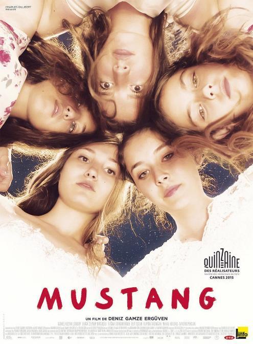 mustang-cine en la enseñanza
