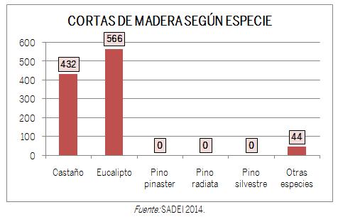 GRÁFICO CORTAS DE MADERA SEGÚN ESPECIE