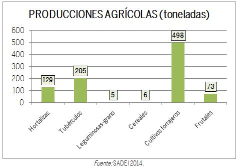 GRÁFICO PRODUCCIONES AGRÍCOLAS