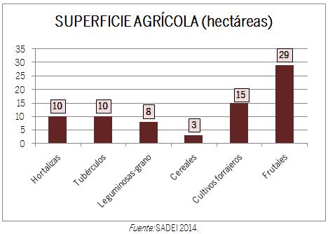 GRÁFICO SUPERFICIE AGRÍCOLA HECTÁREAS