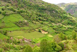 La Llosa y Tablao (Fot. : Asoc. Cultural Los Averinos)
