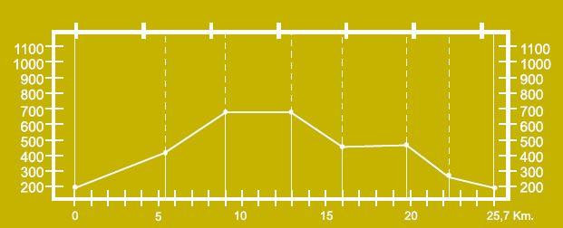 Altimetría del circuito de Peña Regá BTT-MI-7.