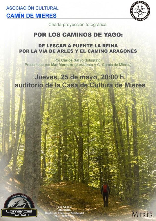 Cartel charla Carlos Salvo caminos yago