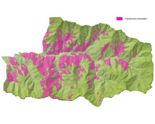 Mapa de las plantaciones forestales de Mieres en el espacio protegido de Las Cuencas Mineras.