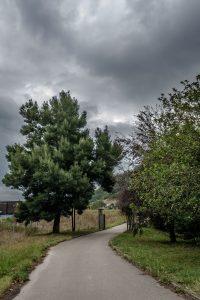 Senda verde de Turón en Figareo (Fot.: Ana Belen Rodríguez - AF Semeya).