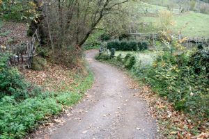 Camino Real de Vistrimir - Riosa