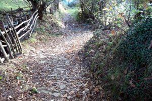 Camino empedrado de Requintín