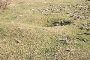 Detalle Necrópolis Tumular de Les Llanes