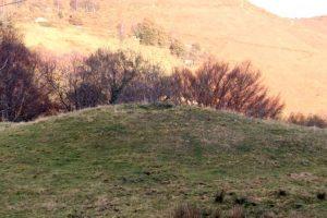 Detalle túmulo Necrópolis tumular de La Blaña