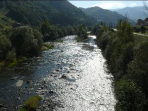 Río Caudal con vegetación de ribera.
