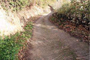 Camino de Trespalacio a  Prado Llagos