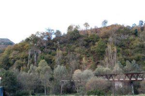 Castro de Pumardongo