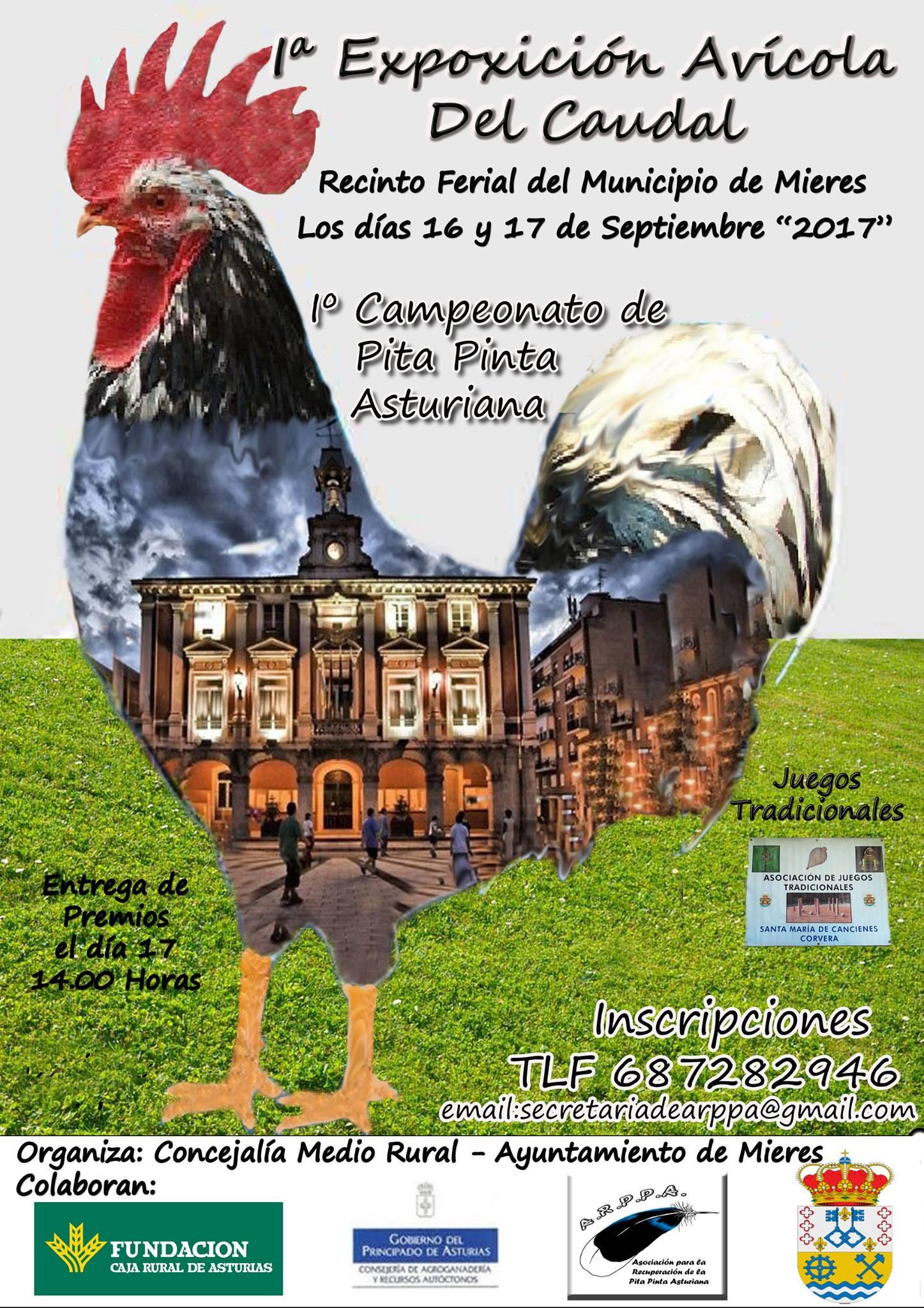 Cartel exposicion avicola del Caudal 2017