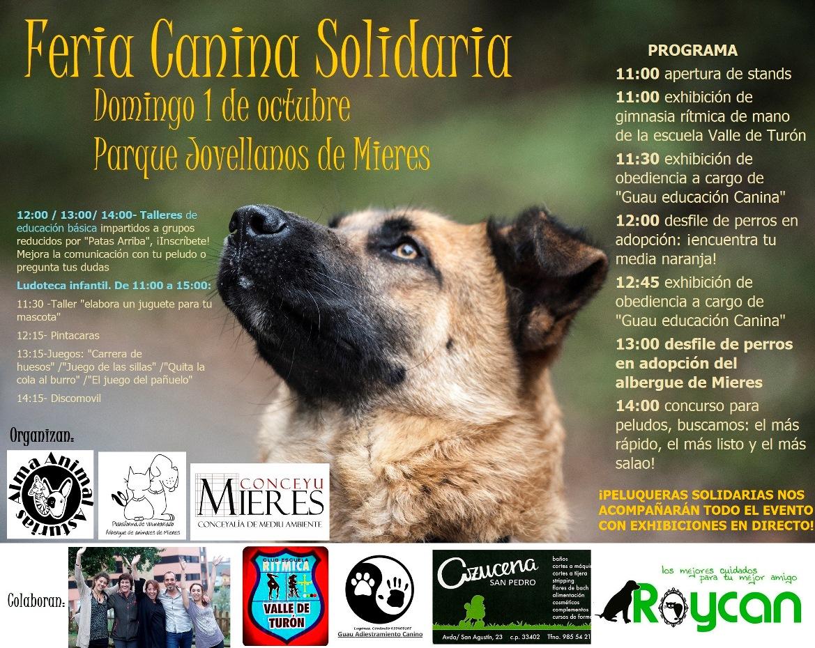 Cartel web Feria Canina Solidaria