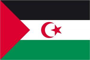 Bandera Sáhara Occidental