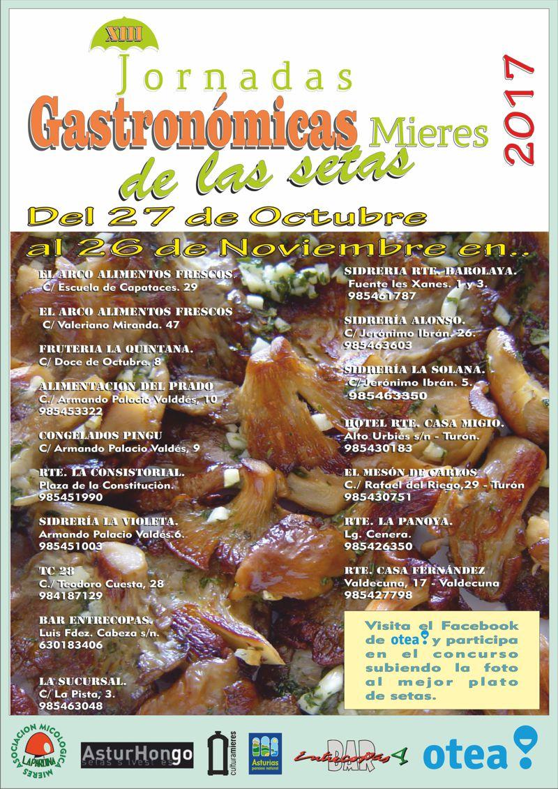 Cartel web Jornadas Setas 2017 Mieres