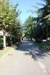 Paseo en los jardines de Juan XXIII.