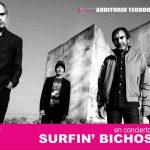 cartel web concierto  mieres surfin bichos