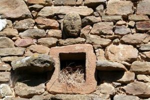 Detalle Casa del Tíu Elías