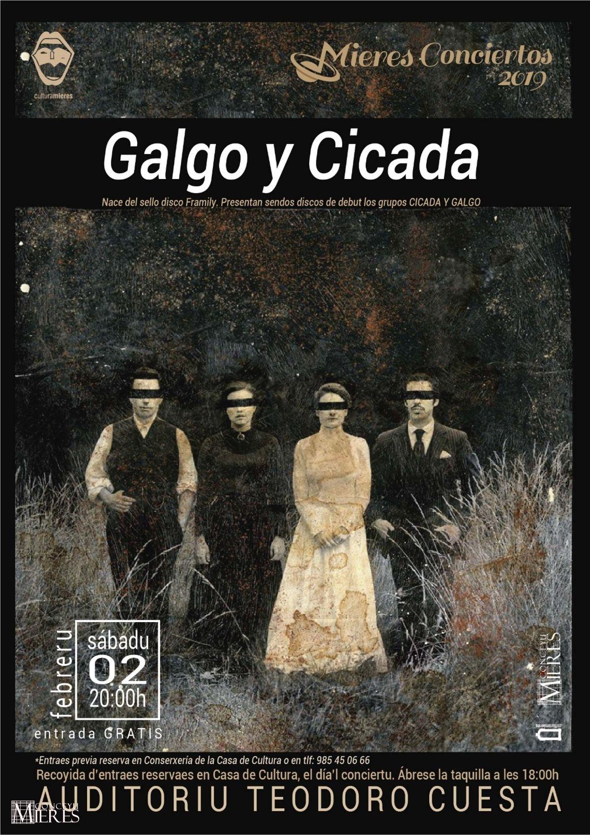 Cartel Web Concierto Galgo Y Cicada