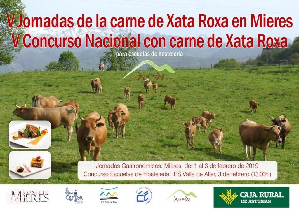 Cartel Web Xata Roxa 2019
