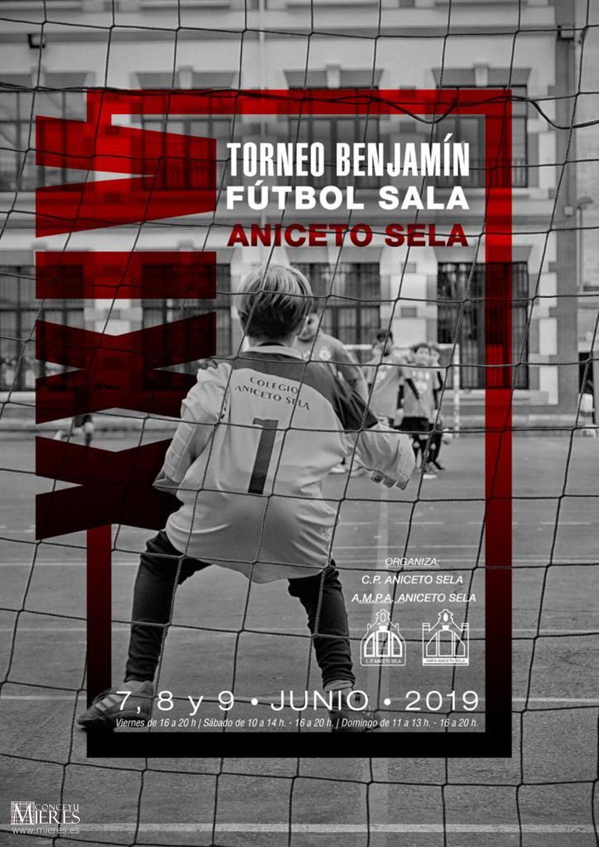 Cartel Web Torneo Futbol Aniceto Sela San Xuan 2019