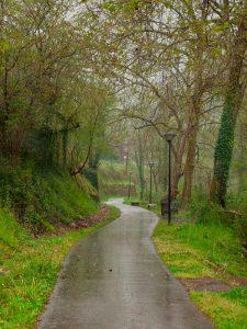 Lluvia na vía verde de Returbiu (Fot.: Carlos Salvo).