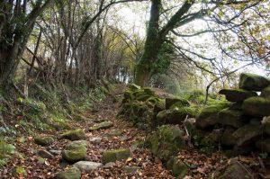 Camino a L'Artusu (Fot.: Jose Luis Soto).