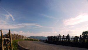 Curva en lo alto de La Col.ladiel.a (Fot.: José Luis Soto).