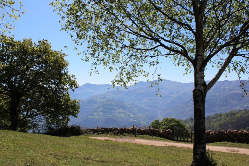 Paisaje Protegido de Las Cuencas Mineras desde el área recreativa La Teyerona.