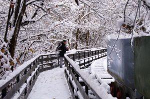 Puente Pomar nevado, la senda verde de Turón(Fot.: José Luis Soto).