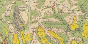 Mieres mapa vegetación 1862 (Fuente: IGN)