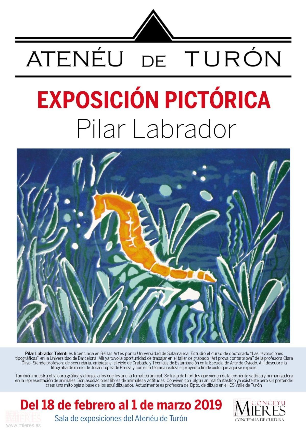 Exposicion Pictorica Pilar Labrador