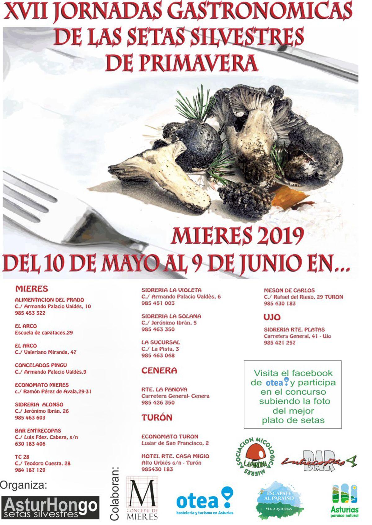 Cartel Web Jornadas Gastronómicas De Las Setas De Mieres Primavera 2019