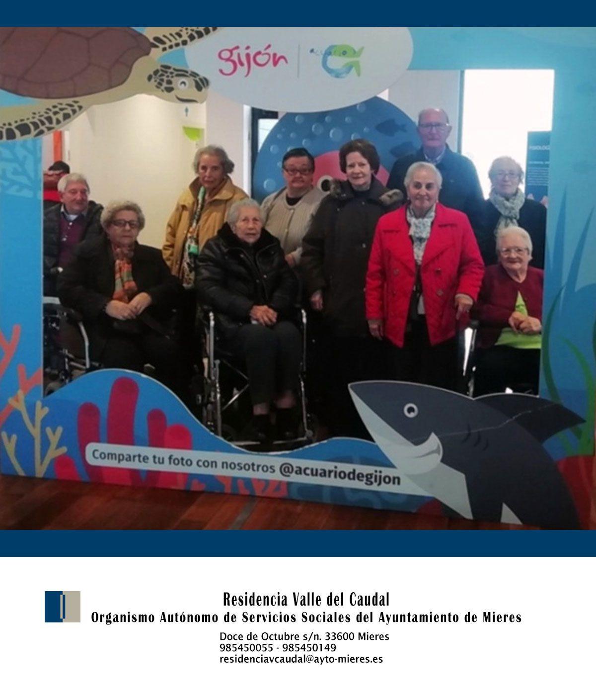 Excursion Acuario De Gijón 2019 Residencia