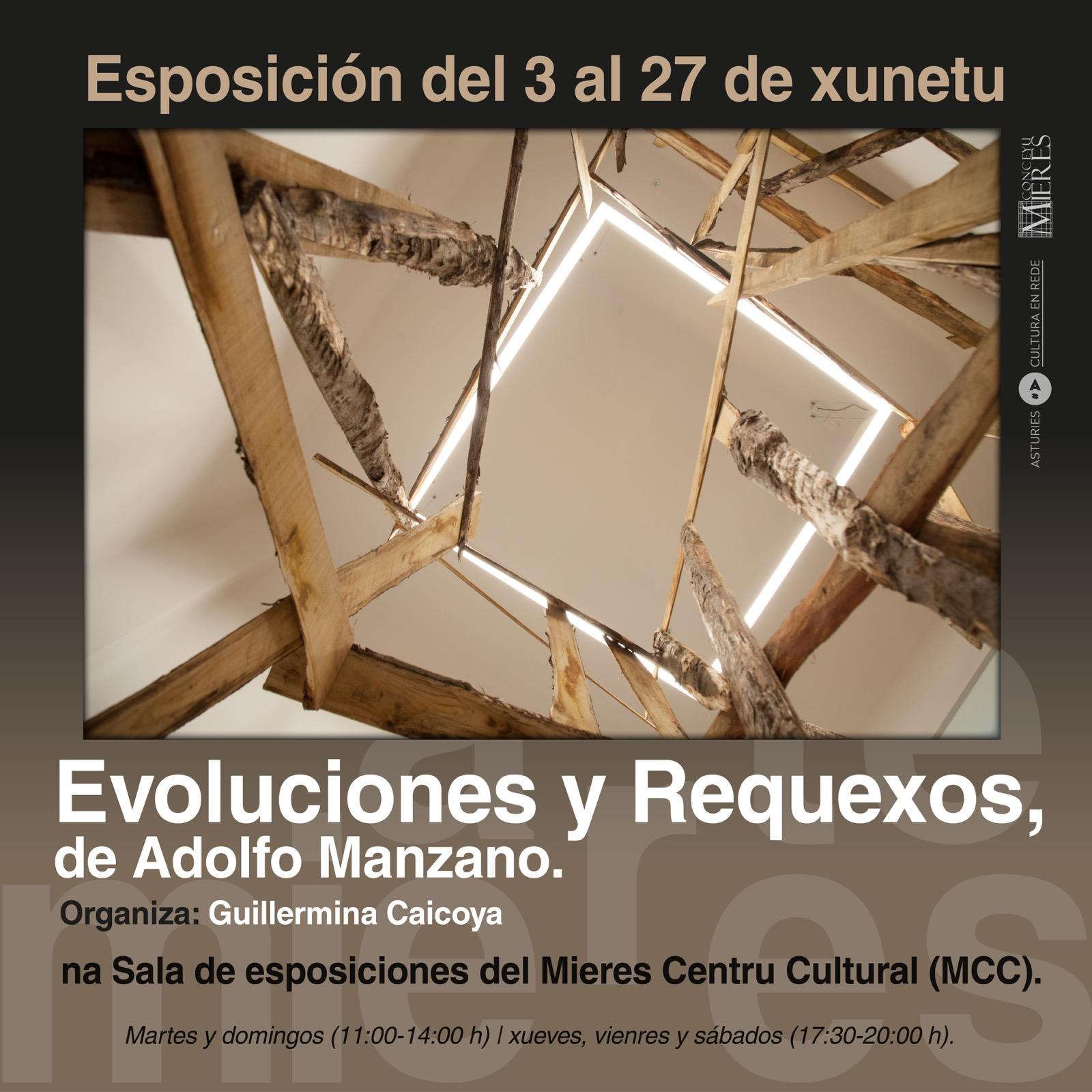 Cartel Exposicion Evoluciones Y Requexos Mieres 2021